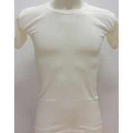 12 T-shirt uomo Trevi manica corta girocollo in caldo misto lana aderente
